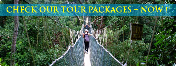 Booking tour packages in Costa Rica