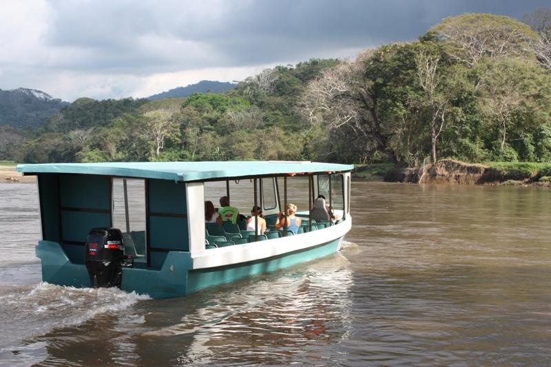 Carara Tour + Crocodile Boat Tour
