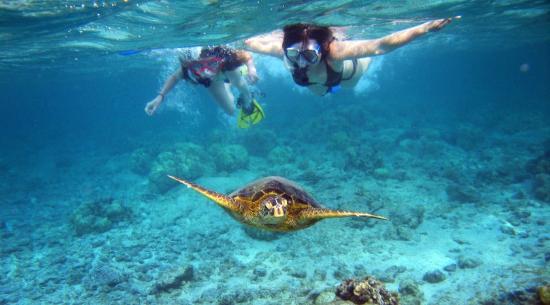 Scuba Diving Aventure Tour