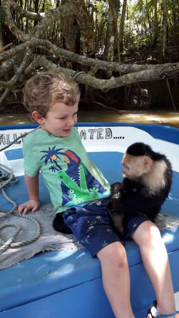 Monkey Mangrove Tour