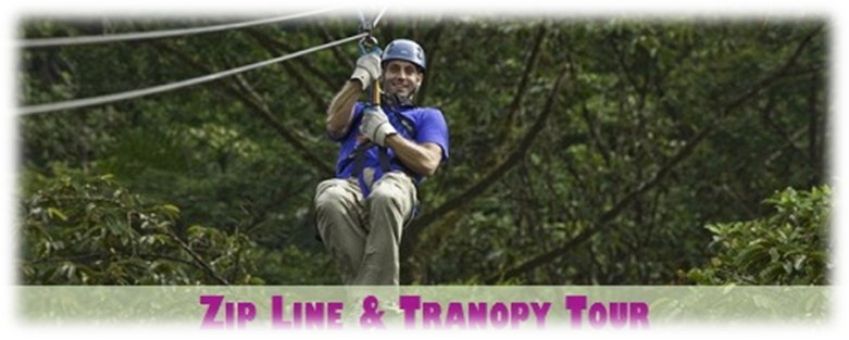 Tranopy: Aerial Tram + Zip Line