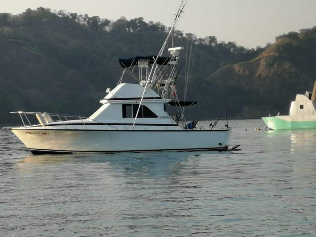 Fishing Tour Paciencia